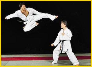 10-contoh-olahraga-beladiri
